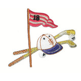 Golf Clubs Hat Balls and Flag