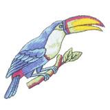 Blue Toucan