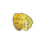 Metallic Gold Sea Shell,