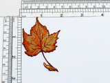 """Fall Maple Leaf Iron On Embroidered Applique  Fully Embroidered in Rayon Threads. Measures 2 3/4"""" long x 1 7/8"""" wide"""