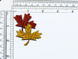 Field Maple Leaf Duo Iron On Applique