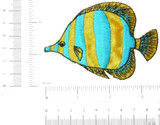 Marine Fish Yellow & Blue