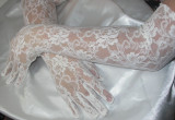 """Lace Gloves 21"""" White Stretch  - 1 Pair"""