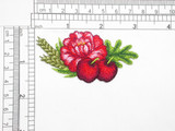Blossom & Oak Apples iron On Applique