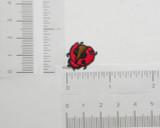Ladybug Brown Under wing 10 pack
