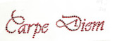 """Rhinestud Applique - """"Carpe Diem"""" Red Seize the day   Colors - RED   Measures 6 5/8"""" wide x 2 """" high  (168mm x 50mm)   Iron On or Heat Transfer   Item Pic is Scanned for accuracy, the studs and stones are much more vibrant to naked eye"""