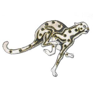 Cheetah WBG X Medium