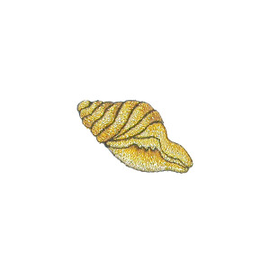 Metallic Gold Sea Shell