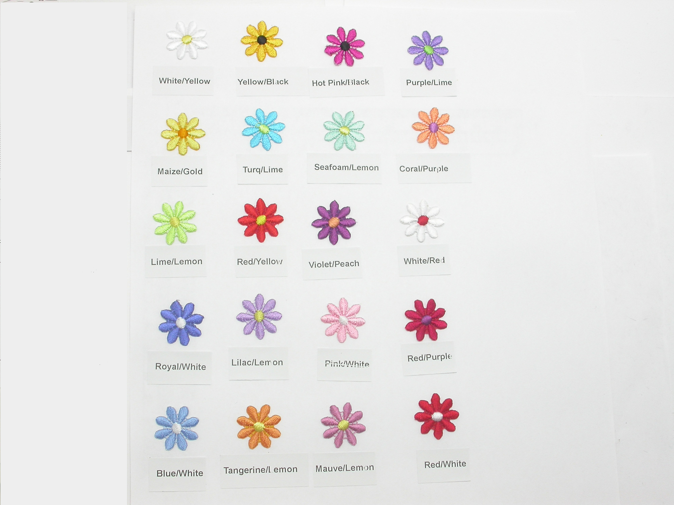 "Daisy 3/4"" Color Options"