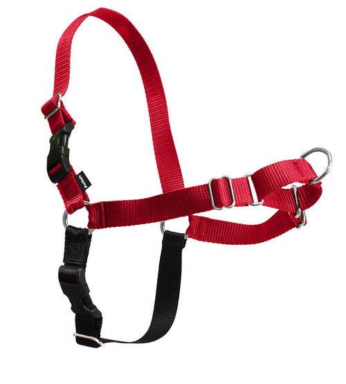 Easywalk harness