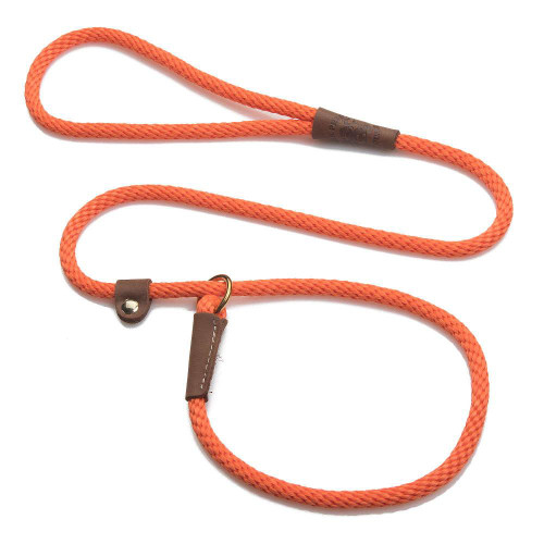 Orange Leash