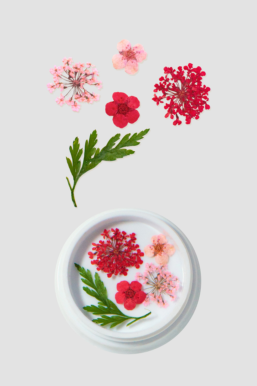 Pink & Red Dried Flowers | Limited Edition
