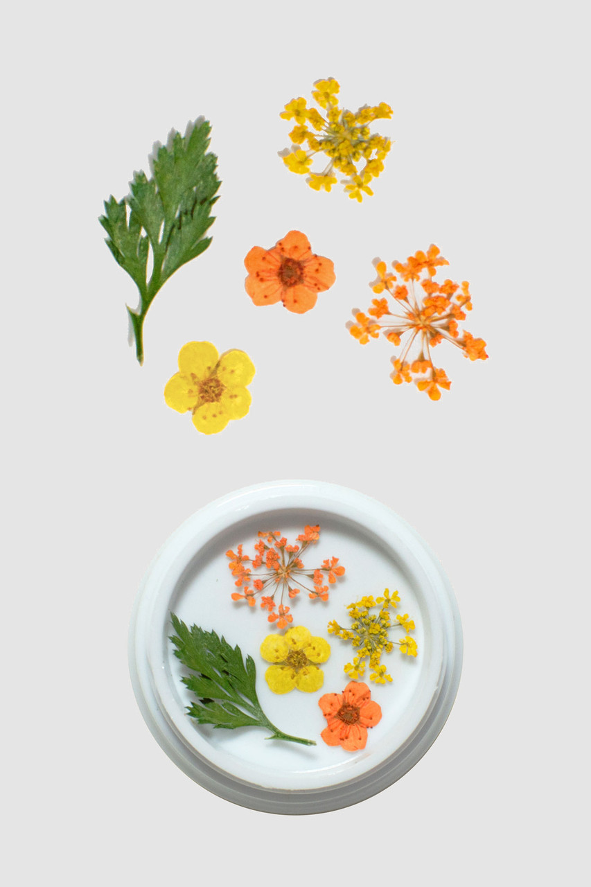 Orange & Yellow Dried Flowers | New Item | Limited Edition