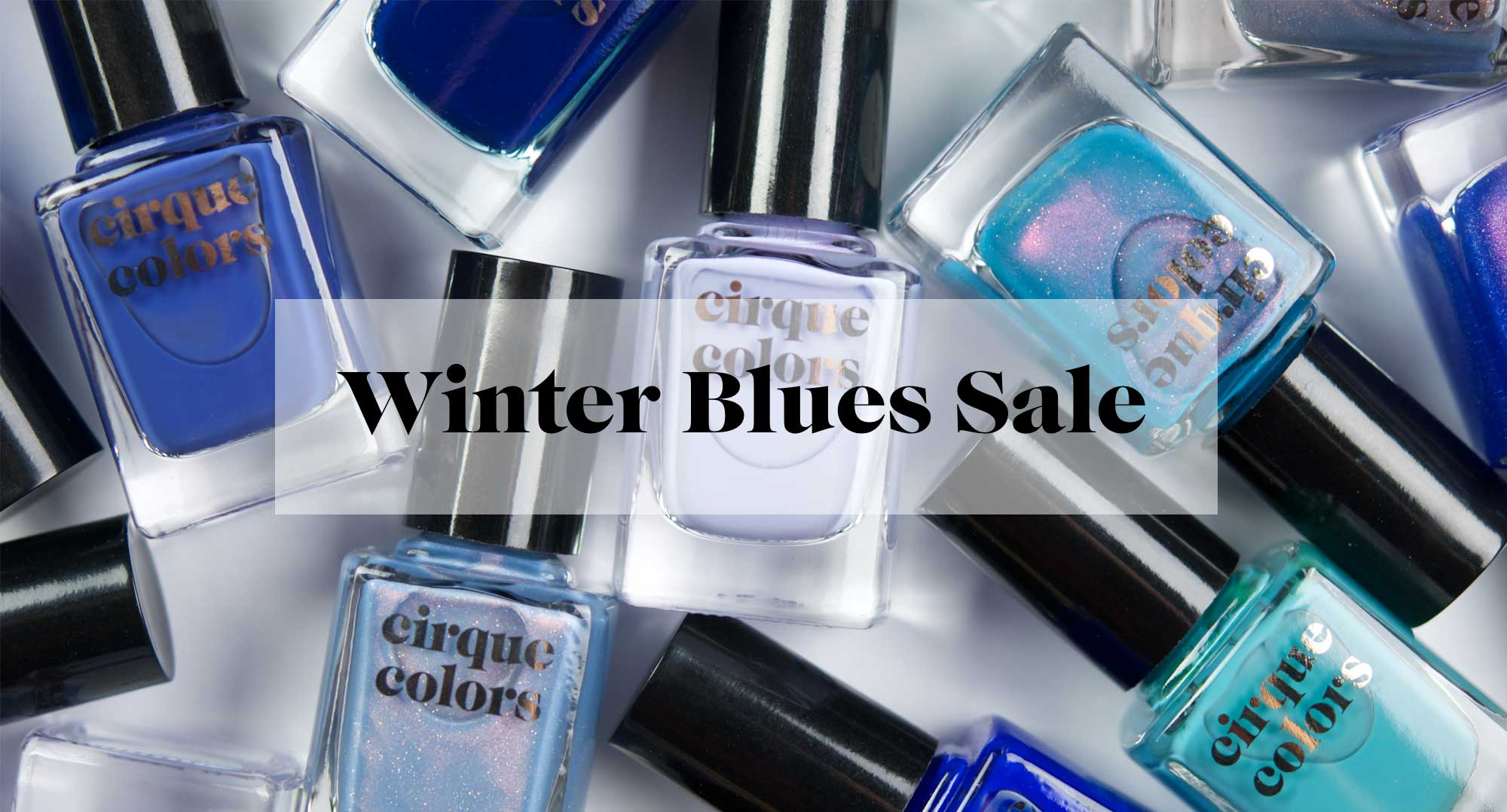 winter blues sale banner