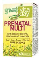 VitaDay Prenatal Multi 60 Veg Capsules