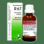 Dr Reckeweg R67 - 50 Ml (10017)