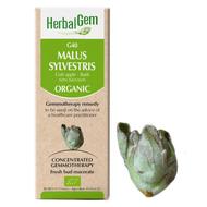 HerbalGem Gemmotherapy G40 Malus sylvestris 15 ml