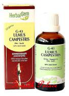HerbalGem Gemmotherapy G43 Ulmus campestris 15 ml