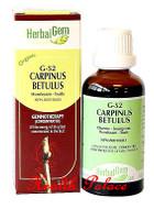 HerbalGem Gemmotherapy G52 Carpinus betulus 15 ml