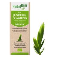 HerbalGem Gemmotherapy G56 Juniperus communis 15 ml