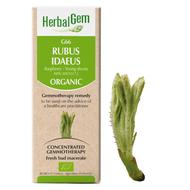 HerbalGem Gemmotherapy G66 Rubus idaeus15 ml