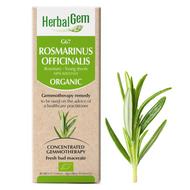 HerbalGem Gemmotherapy G67 Rosmarinus officinalis15 ml