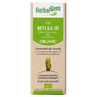 HerbalGem Gemmotherapy G33 Betula species 50 ml