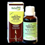HerbalGem Gemmotherapy G74 Ampelopsis veitchii 50 ml
