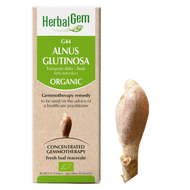 HerbalGem Gemmotherapy G44 Alnus glutinosa 50 ml