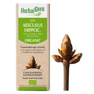 HebalGem Gemmotherapy G53 Aesculus hippocastanum 50 ml