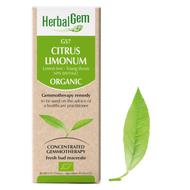 HerbalGem Gemmotherapy G57 Citrus limonum 50 ml