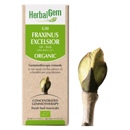 HerbalGem Gemmotherapy G30 Fraxinus excelsior 50 ml