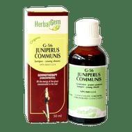 HerbalGem Gemmotherapy G56 Juniperus communis 50 ml