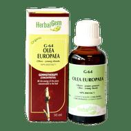 HerbalGem Gemmotherapy G64 Olea europaea 50 ml