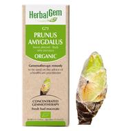 HerbalGem Gemmotherapy G71 Prunus amygdalus 50 ml
