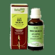 HerbalGem Gemmotherapy G34 Ribes nigrum 50 ml