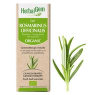 HerbalGem Gemmotherapy G67 Rosmarinus officinalis 50 ml