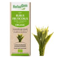 HerbalGem Gemmotherapy G37 Rubus fruticosus 50 ml