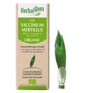 HerbalGem Gemmotherapy G32 Vaccinium myrtillus 50 ml