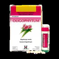 Holistica Oligophytum H13 Zinc 300 Sublingual Tablets