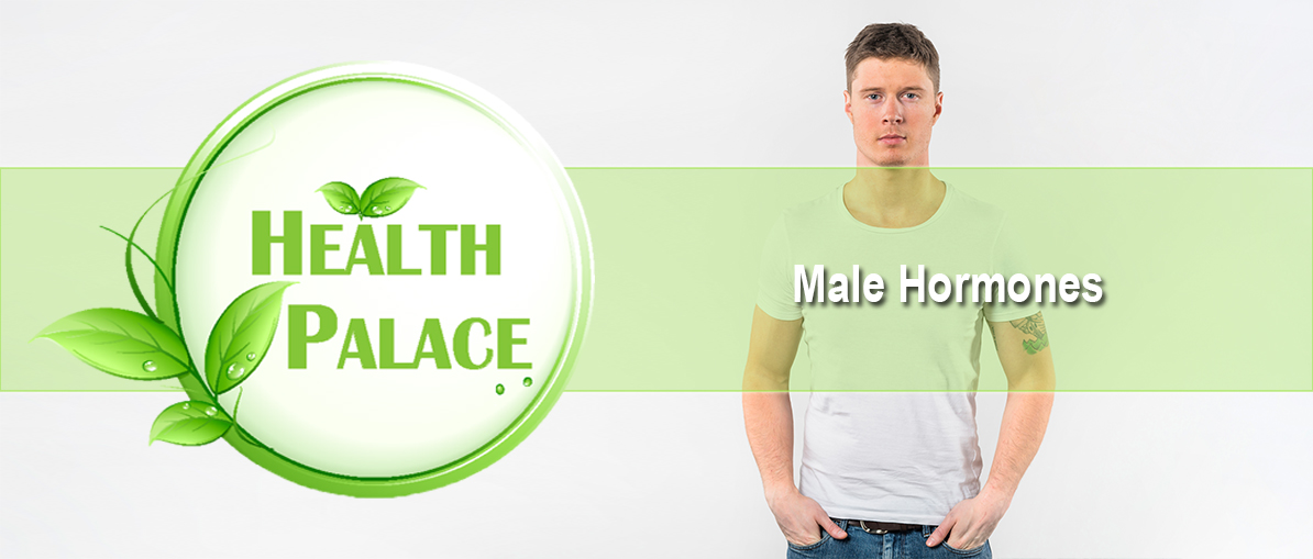 hp-male-hormones.jpg