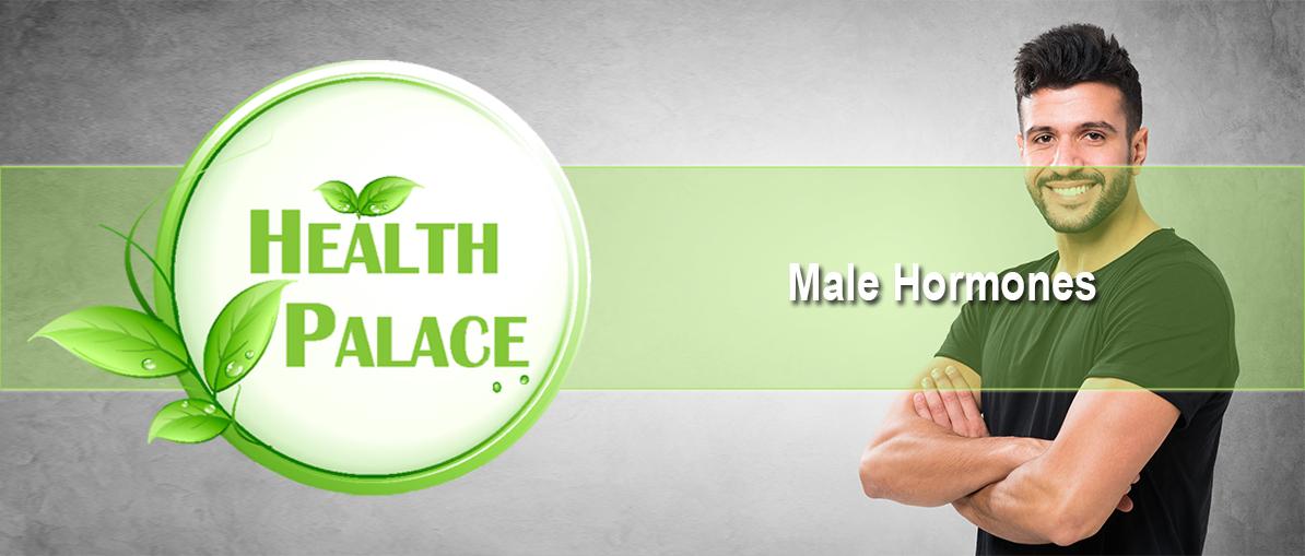 male-hormones.jpg