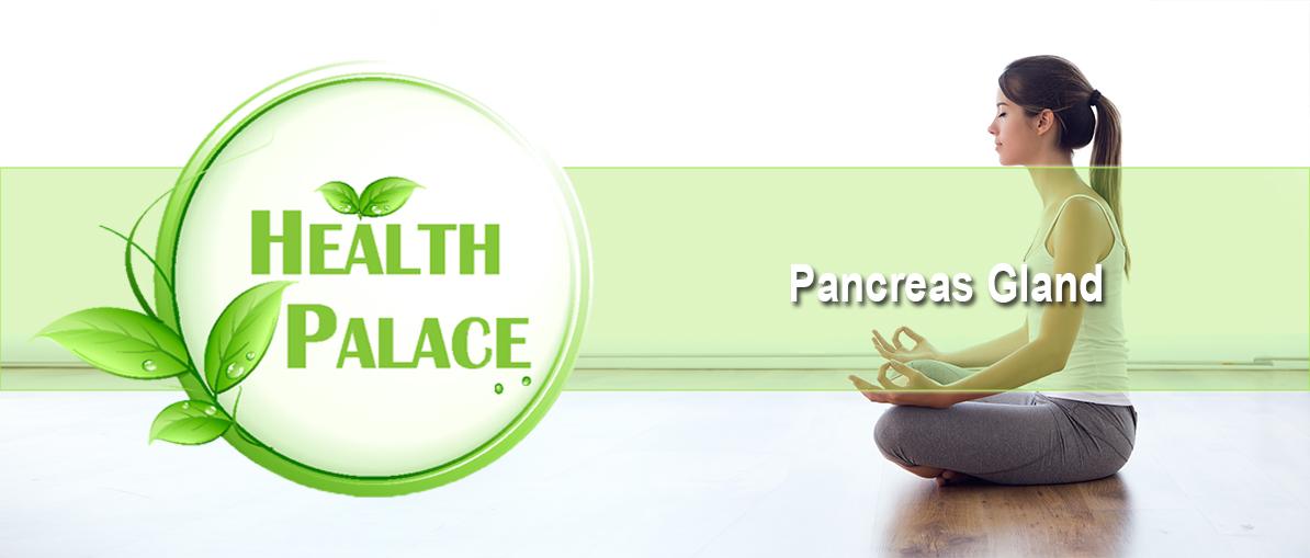 pancreas-gland-2.jpg