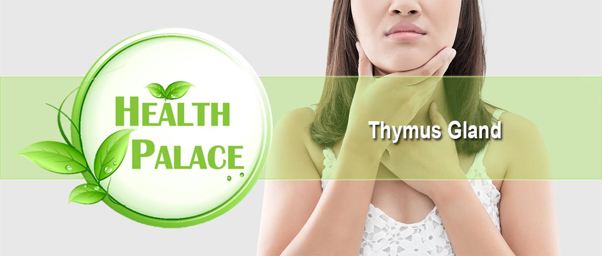 thymus-gland.jpg