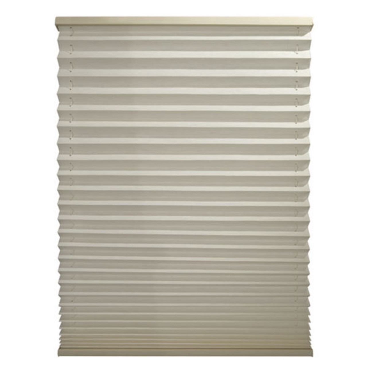TH Pleated Day Night Shades