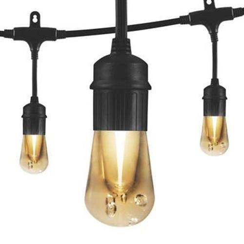 Vintage Edison-Style LED Party Lights, Black Cord, 12'