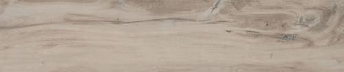 Amazonia Amendoa 19.5x91.2