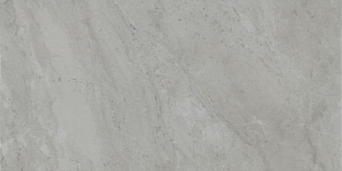 Elegant Gray AC 30x60