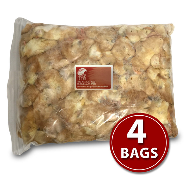 Day-Old Chicks - 4 Bags
