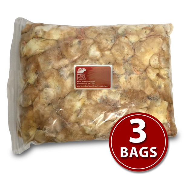 Day-Old Chicks - 3 Bags
